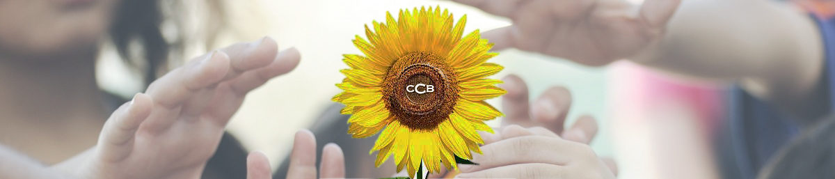 CCB Carity Club Berlin e.V.